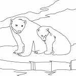 Bear Coloring Page for Kids Image