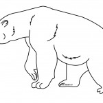 Bear Coloring Page for Kids Picture