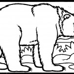 Bear Coloring Pages Photos