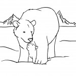 Bear Coloring Pages Picture