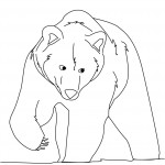 Bear Coloring Pages for Kids Photo