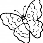 Butterfly Coloring Page Photo