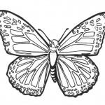 Photo of Butterfly Coloring Page