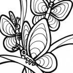 Picture of Butterfly Coloring Page for Kids