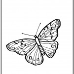 Pictures of Butterfly Coloring Page for Kids