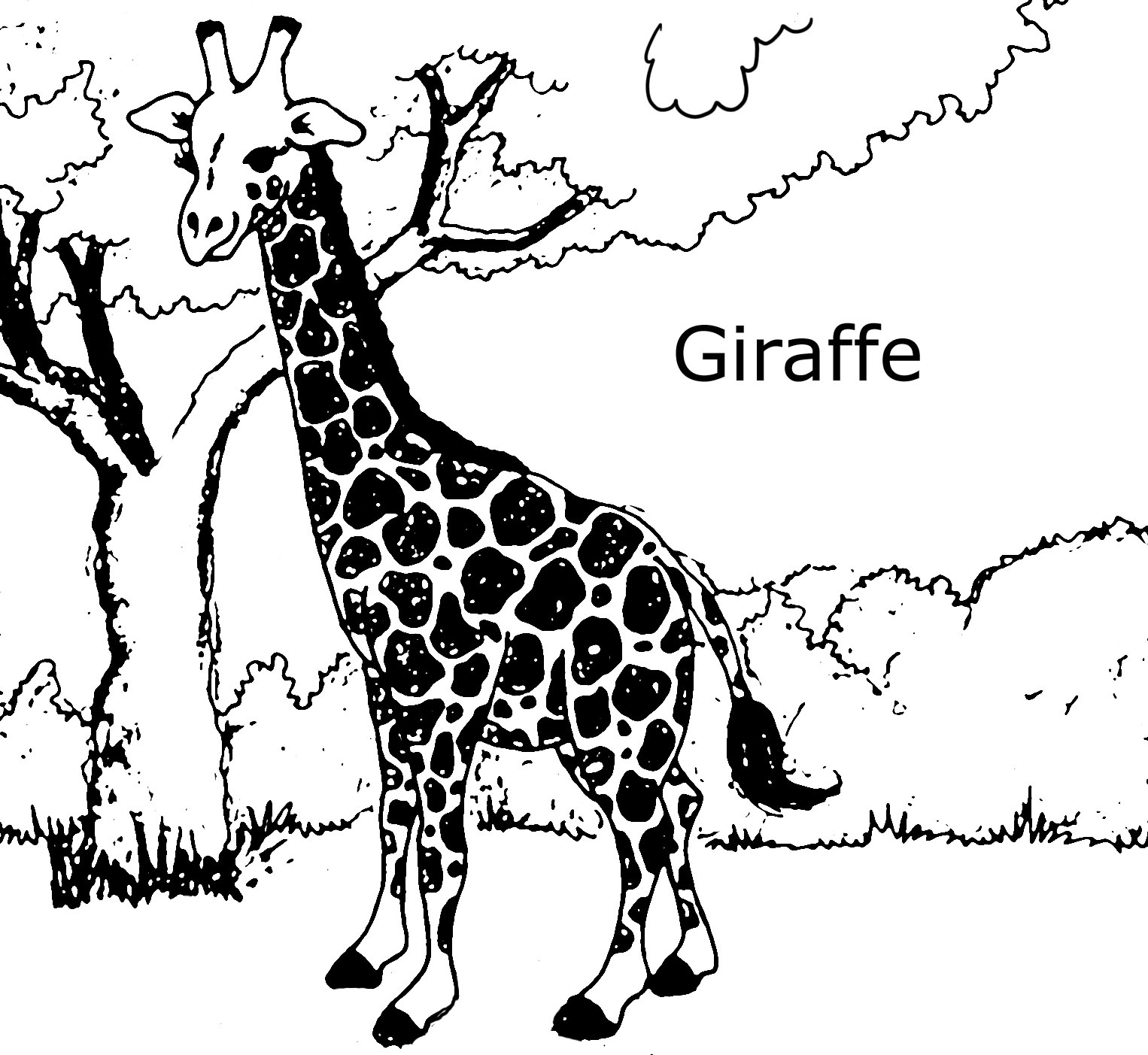 free printable giraffe coloring pages for kids animal place