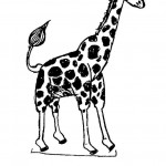 Coloring Page of Giraffe  Picture