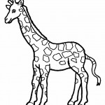 Coloring Page of Giraffe Pictures