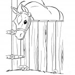 Photo of Coloring Page of Horse