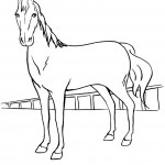 Picture of Coloring Page of Horse