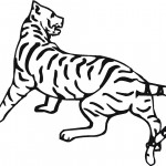Coloring Page of Tiger Image