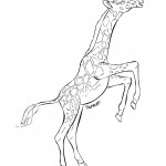 Coloring Pages of Giraffe Picture