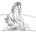 Picture of Coloring Pages of Horse