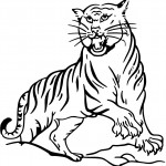 Coloring Pages of Tiger