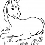 Cute Horse Coloring Pages Picture