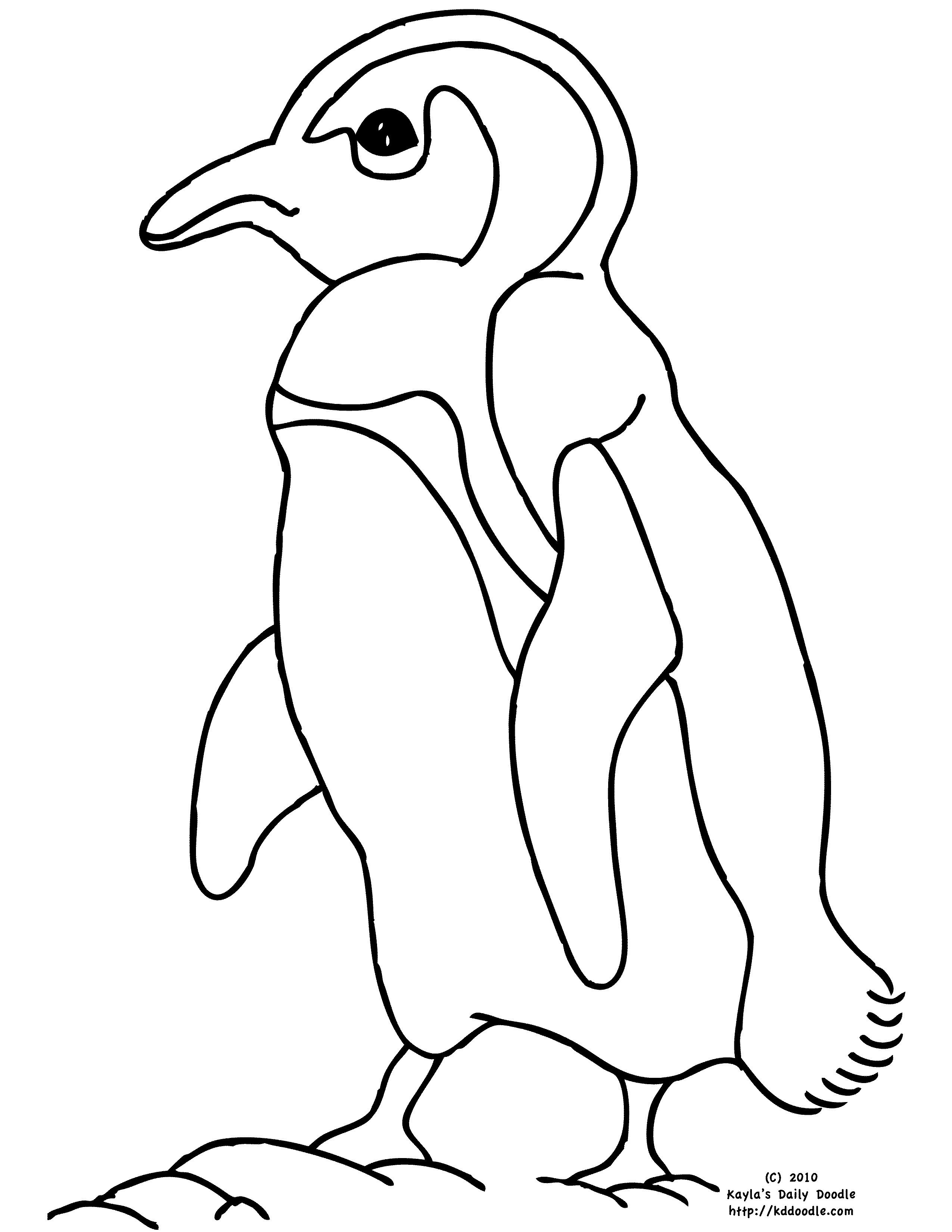 cute penguin coloring pages virtren com