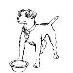 Image of Dog Coloring Pages for Kids