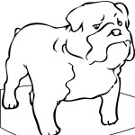 Picture of Dogs Coloring Pages for Kids
