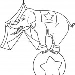 Elephant Coloring Page Photo