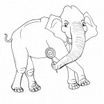 Elephant Coloring Page for Kids Photos