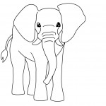 Elephant Coloring Pages Images
