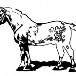 Farm Horse Coloring Page Image