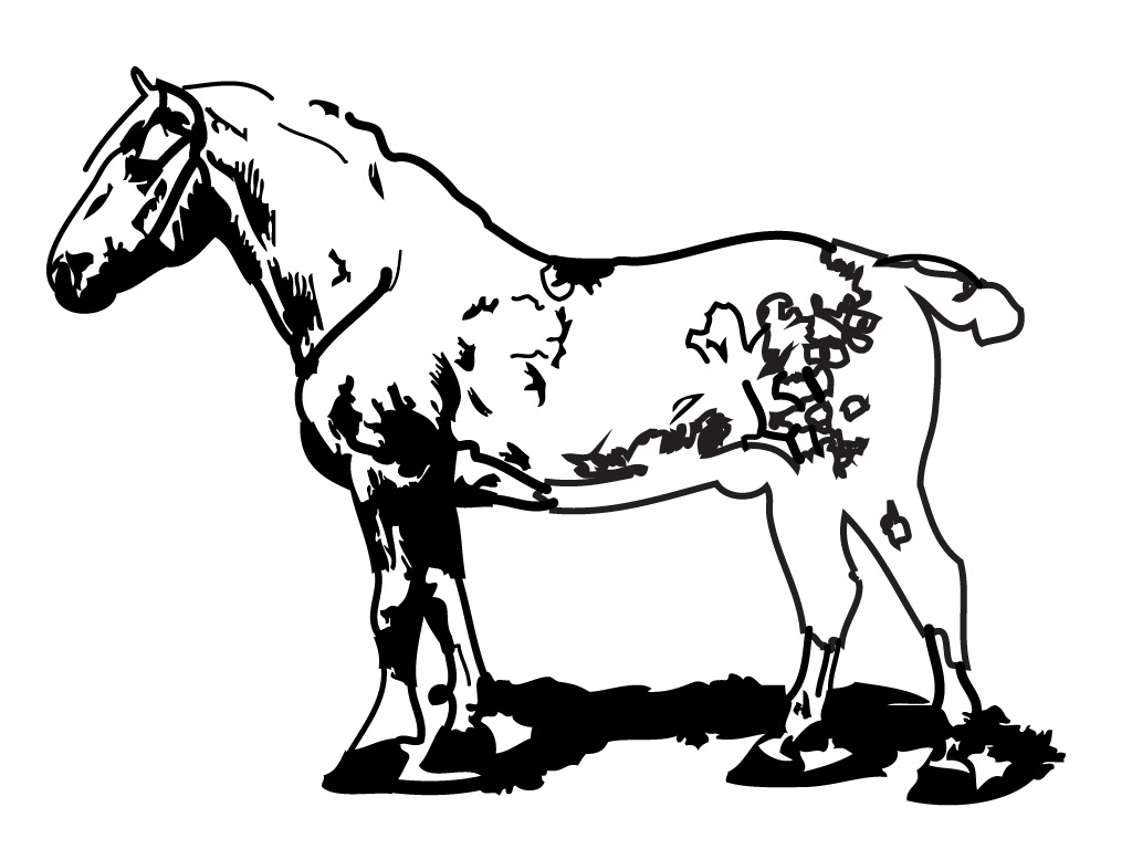 Farm animal horse coloring pages - Farm Horse Coloring Page Image