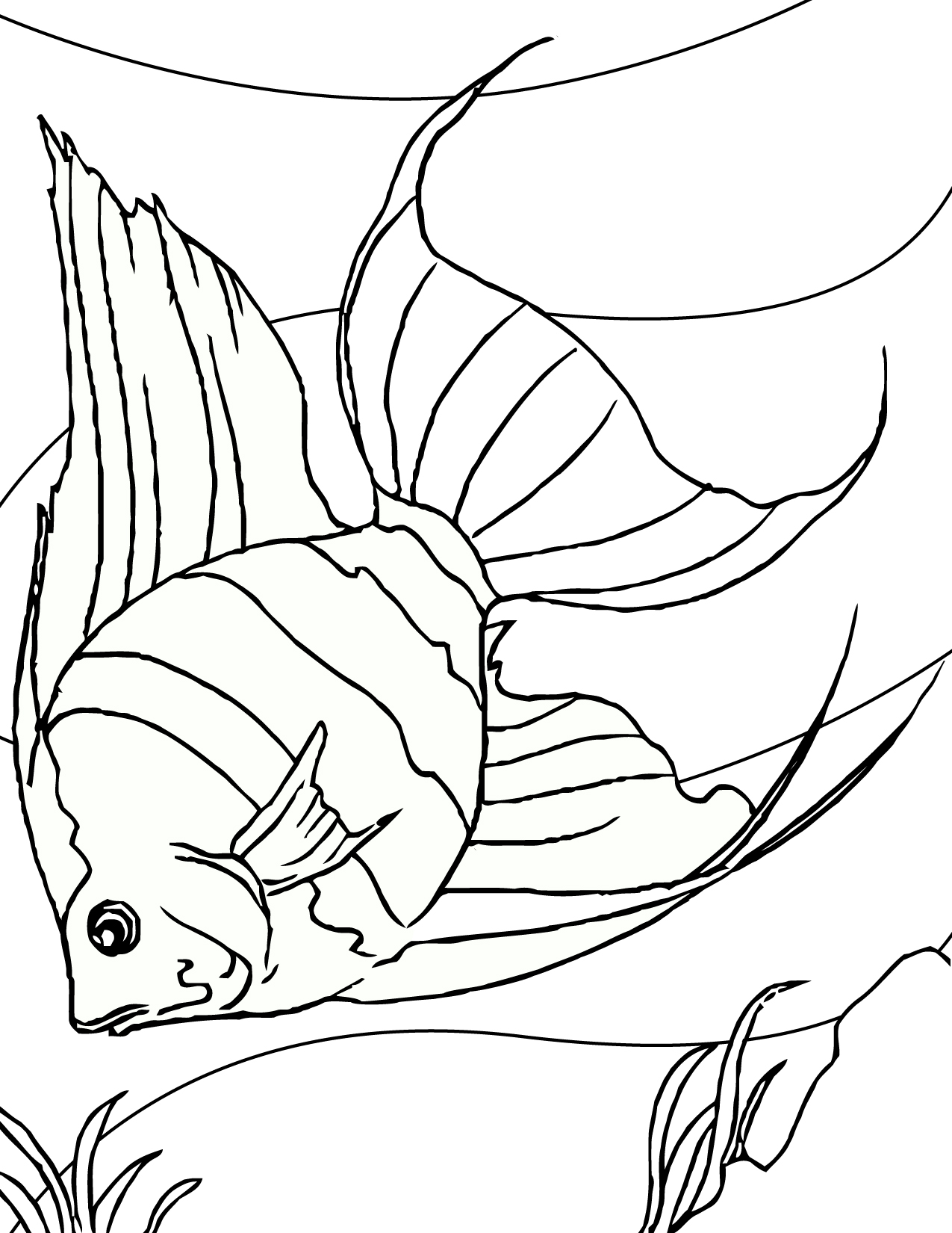 free printable fish coloring pages for kids animal place - Kid Pictures To Print