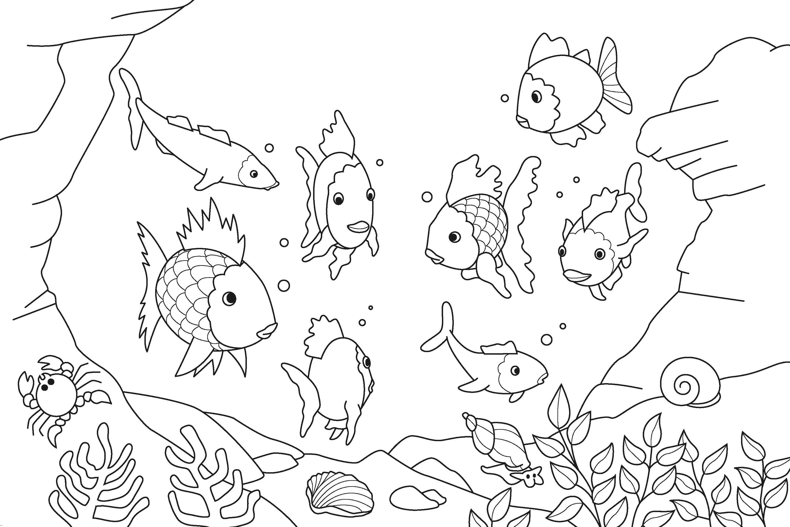 Coloring pages underwater - Coloring Pages Underwater 44