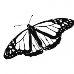 Picture of Free Butterfly Coloring Page for Kids