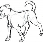 Free Dog Coloring Pages Photo
