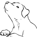 Photo of Free Dog Coloring Pages