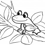 Frog Coloring Page Image