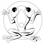 Frog Coloring Page Images