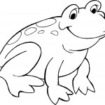 Frog Coloring Page Photos