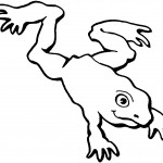 Frog Coloring Page for Kids Images
