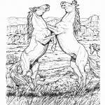 Horse Animal Coloring Pages Photo