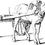 Images of Horse Coloring Pages