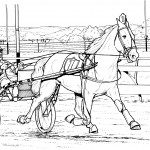 Photos of Horse Coloring Pages