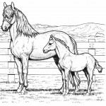 Horse Coloring Pages for Kids Image