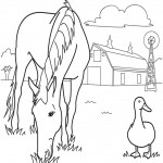 Horse Eating Grass Coloring Page Image