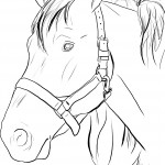 Horse Head Coloring Pages Image