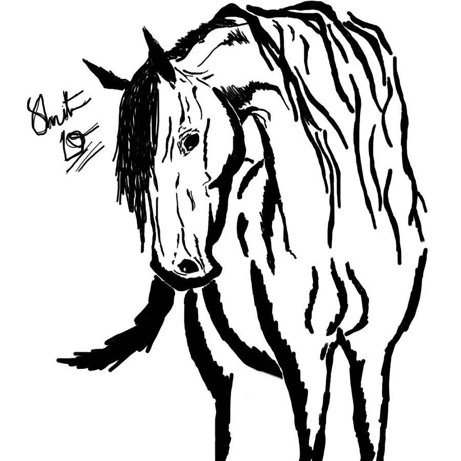 Horse Sketch Coloring Pages Picture
