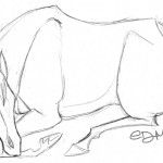 Horse Sleeping Coloring Page Photo