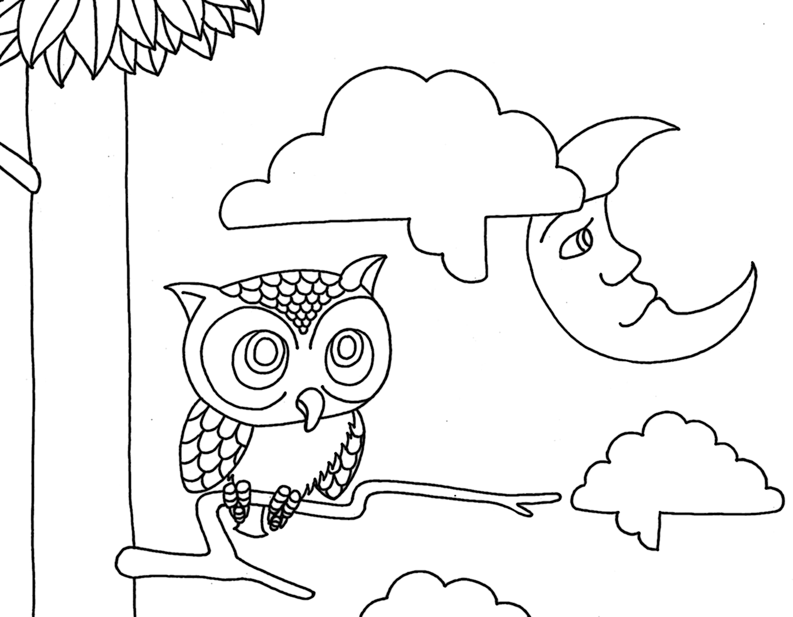 owl coloring pages for kids - free printable owl coloring pages for kids animal place