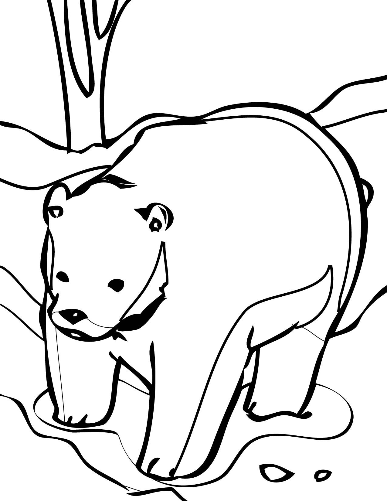 Coloring Pages | Animal Place - Part 4