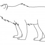 Polar Bears Coloring Pages Picture