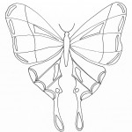 Picture of Printable Butterfly Coloring Pages