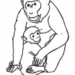 Printable Coloring Page of Monkey
