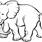 Printable Elephant Coloring Page Picture